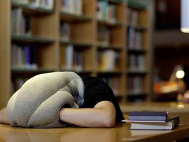 Coussin de repos : OStrich Pillow
