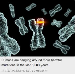 Mutations génétiques au cours du temps